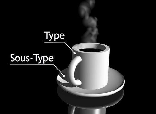 Enneagramme-sous-types